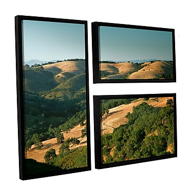 ArtWall Hills of California by Steve Ainsworth 3 Piece Framed Photographic Print Set