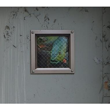BLIK Inc 4 Piece Fish Grate Wall Decal Set