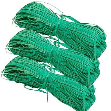 JAM PaperMD – Ballot de ruban en raphia, 1,7 oz, vert, 3/paquet (2190215232 g)