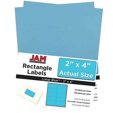 JAM Paper® Mailing Address Labels, 2 x 4, AstroBrights® Lunar Blue, 2 packs of 120 (302725768g)