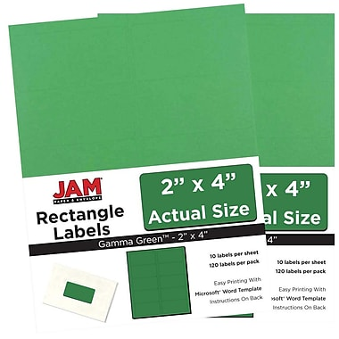 JAM Paper® Mailing Address Labels, 2 x 4, AstroBrights® Gamma Green, 2 packs of 120 (302725774g)