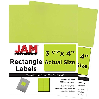 JAM Paper® Mailing Address Labels, 3 1/3 x 4, AstroBrights® Terra Lime Green, 2 packs of 120 (302725780g)