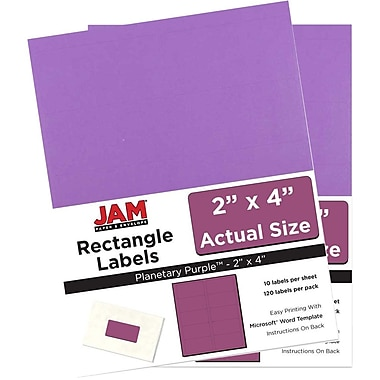 JAM Paper® Mailing Address Labels, 2 x 4, AstroBrights® Planetary Purple, 2 packs of 120 (302725790g)