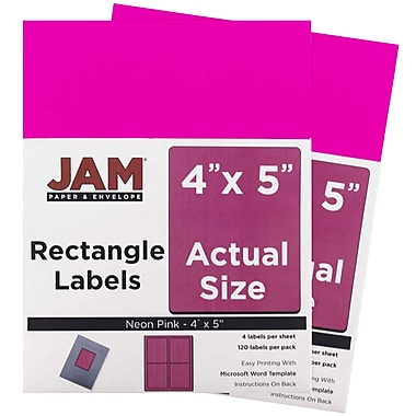 JAM Paper® Mailing Address Labels, 4 x 5, Neon Pink, 2 packs of 120 (354329165g)