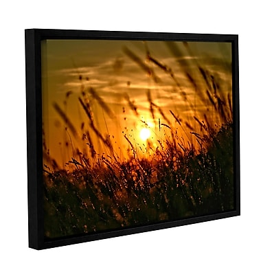 ArtWall An Evening w/ the Quiet Voice by Mark Ross Framed Photographic Print; 36'' H x 48'' W