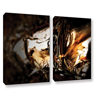 ArtWall Mend by Mark Ross 2 Piece Photographic Print on Wrapped Canvas Set; 24'' H x 32'' W x 2'' D
