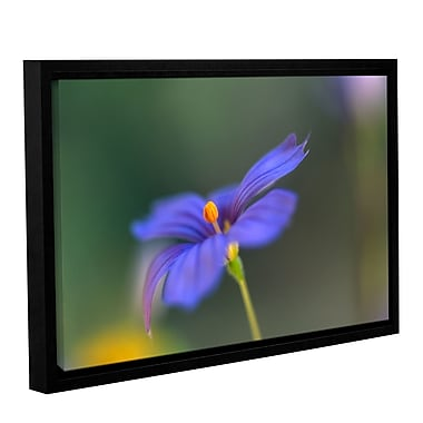 ArtWall Wildflower Dance by Kathy Yates Framed Photographic Print; 12'' H x 18'' W