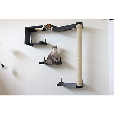 CatastrophiCreations 54'' Sky Track Handcrafted Cat Tree; Onyx/Charcoal