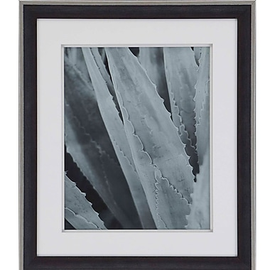 Paragon Contemporary Agave IV by Urquhart Framed Photographic Print