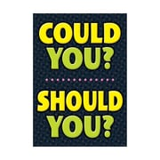 "Argus® 19 x 13"" COULD YOU? SHOULD YOU? Poster (T-A67059)"