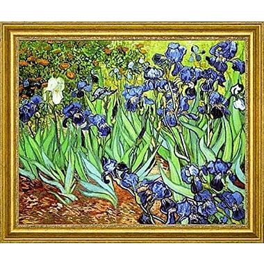 CanvasArtUSA 'Irises' by Vincent Van Gogh Framed Painting Print; 30'' H x 36'' W x 1.25'' D