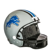 Evergreen Enterprises, Inc Landscape Melodies Detroit Lions Helmet