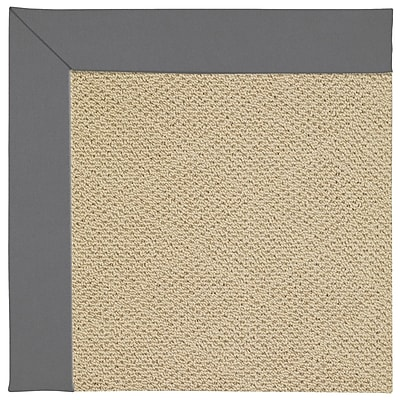 Capel Zoe Machine Tufted Ash/Brown Indoor/Outdoor Area Rug; Rectangle 2' x 3'