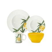 Oxford Porcelain Biona Tropical 16 Piece Dinnerware Set, Service for 4