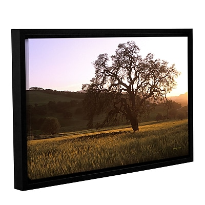 ArtWall Golden Hour by Kathy Yates Framed Photographic Print on Wrapped Canvas; 12'' H x 18'' W WYF078277833341