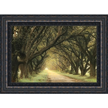Tangletown Fine Art Evergreen Alley by William Guion Framed Graphic Art