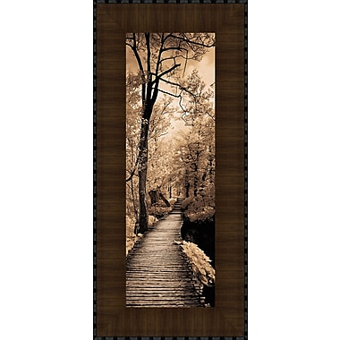 Tangletown Fine Art A Quiet Stroll I by Ily Szilagyi Framed Photographic Print