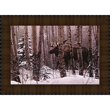Tangletown Fine Art A Walk in the Woods by Stephen Lyman Framed Photographic Print
