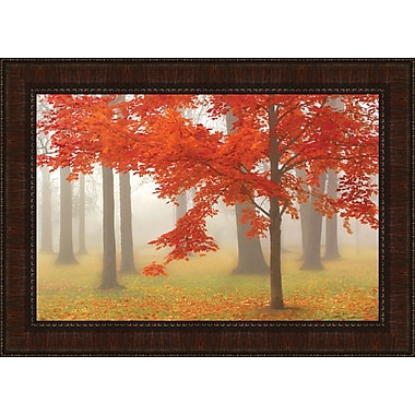 Tangletown Fine Art Autumn Mist I by Donna Geissler Framed Photographic Print
