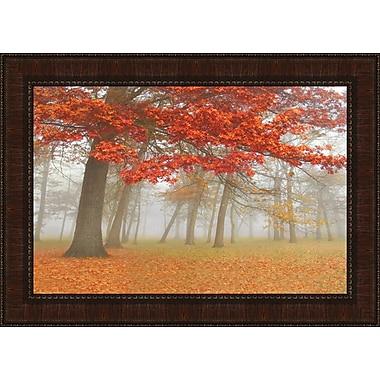 Tangletown Fine Art Autumn Mist II by Donna Geissler Framed Photographic Print