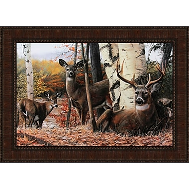 Tangletown Fine Art Autumn's Majesty by Kevin Daniel Framed Photographic Print
