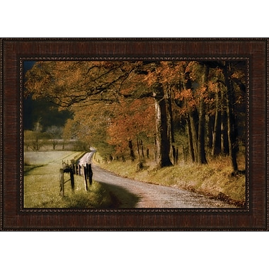 Tangletown Fine Art Autumn's Morning Light by D. Burt Framed Painting Print