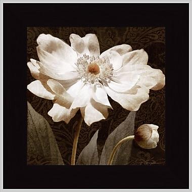 Tangletown Fine Art Paisley Blossom I by Keith Mallett Framed Graphic Art