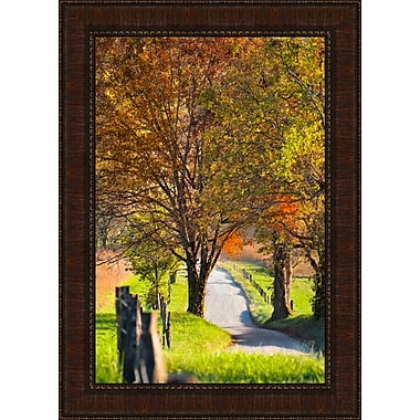 Tangletown Fine Art Country Road I by Dean Fikar Framed Photographic Print