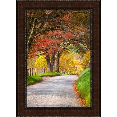 Tangletown Fine Art Country Road II by Dean Fikar Framed Photographic Print