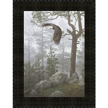 Tangletown Fine Art Shrouded Forest by Daniel Smith Framed Photographic Print