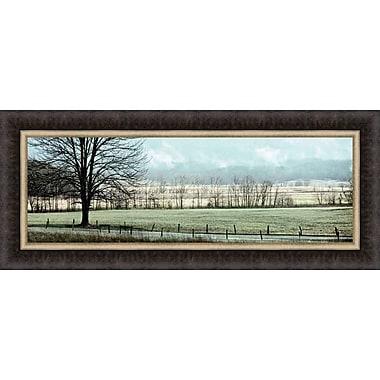 Tangletown Fine Art Splendor by Todd McPhetridge Framed Graphic Art