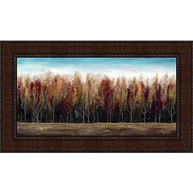 Tangletown Fine Art Deep Forest by Stephane Fontaine Framed Painting Print