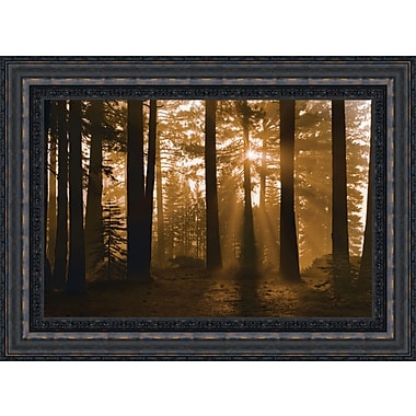 Tangletown Fine Art Tahoe Smoky Sunrise by Mike Jones Framed Painting Print