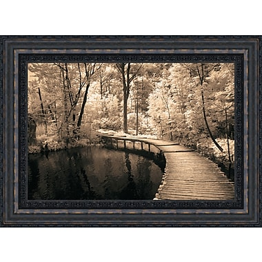 Tangletown Fine Art Take My Lead I by Ily Szilagyi Framed Photographic Print