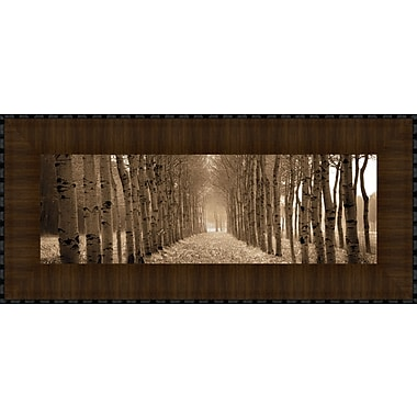 Tangletown Fine Art The Shimmering Forest by Heather Ross Framed Photographic Print