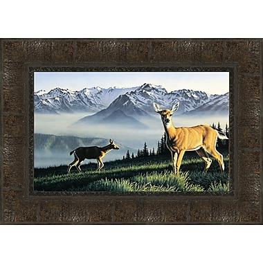Tangletown Fine Art Hurricane Ridge Framed Photographic Print