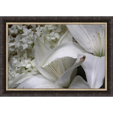 Tangletown Fine Art White Lily by Bill Kellett Framed Photographic Print