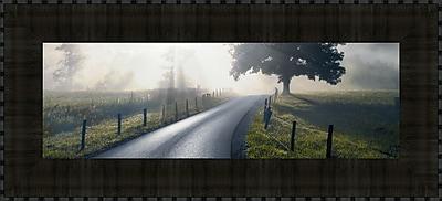 Tangletown Fine Art Mountain Morning Glory by Todd McPhetridge Framed Photographic Print