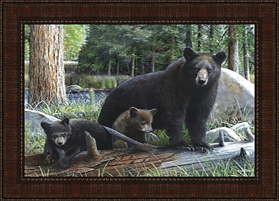 Tangletown Fine Art New Discoveries by Kevin Daniel Framed Photographic print