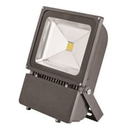 Monument 1-Light LED Flood Light