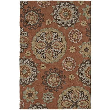 Dalyn Rug Co. Cabana Hand-Tufted Spice Indoor/Outdoor Area Rug; Rectangle 9' x 13'
