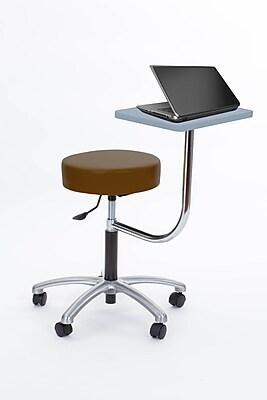 Brandt Laptop Adjustable Height Revolving Stool with 360 Degree Rotating Desk (14111 Buckskin)