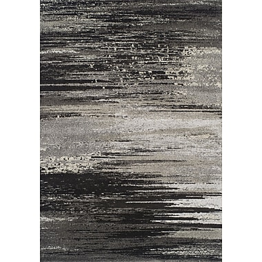 Dalyn Rug Co. Modern Greys Pewter Area Rug; 3'3'' X 5'3''