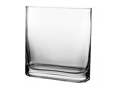 CYSExcel Rectangular Vase (Set of 6); 7.5'' H x 7.25'' W x 2.75'' D WYF078278908859