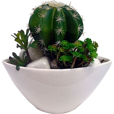Creative Branch Faux Cactus Mix Desk Top Plant in Planter