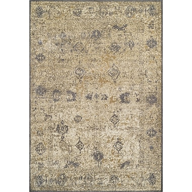 Dalyn Rug Co. Antiquity Dalyn Gray/Brown Area Rug; 9'6'' X 13'2''
