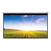 Hamilton Buhl™ WS-W66118 Manual Pull Down HDTV Projector Screen, 135""