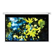 Hamilton Buhl™ HBS5385 Electric Projector Screen, 100""