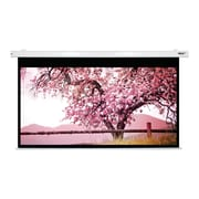 Hamilton Buhl™ BFF-5496 Quick Release Folding Frame HDTV Projector Screen with Case, 110""