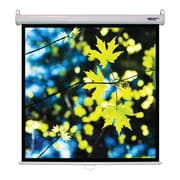 Hamilton Buhl™ WS-W50 Manual Pull Down Square Projector Screen, 71""